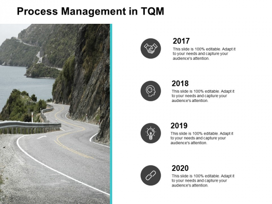 Process Management In TQM 2017 To 2020 Ppt PowerPoint Presentation Portfolio Demonstration