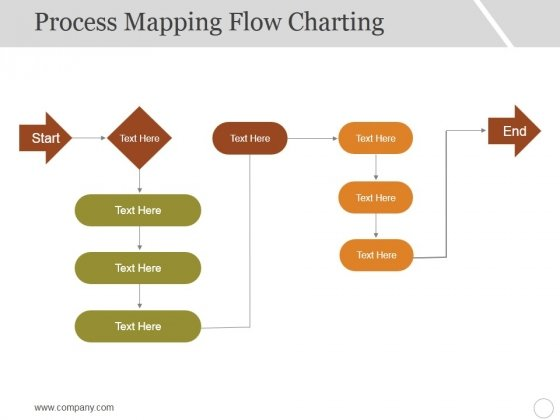Process Mapping Flow Charting Ppt PowerPoint Presentation Infographic Template Graphics Pictures