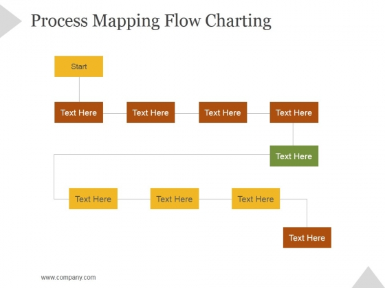 Process Mapping Flow Charting Ppt PowerPoint Presentation Slide Download