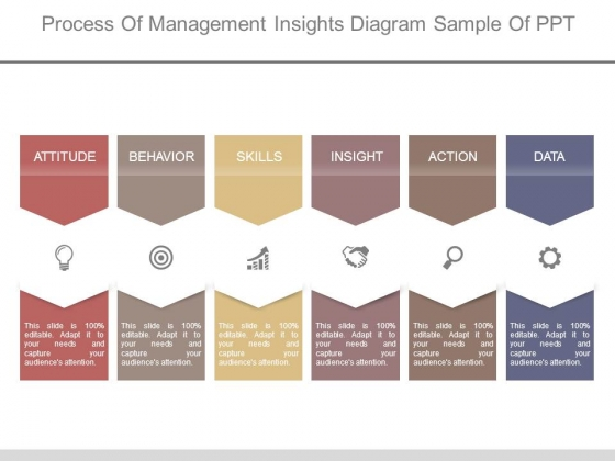 Process Of Management Insights Diagram Sample Of Ppt