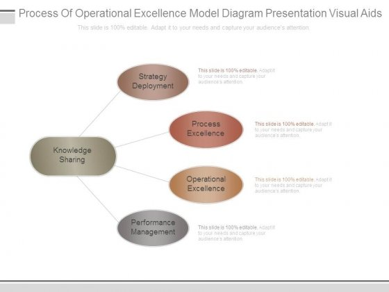 Process Of Operational Excellence Model Diagram Presentation Visual Aids