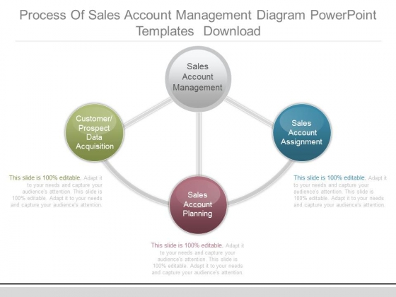 Process Of Sales Account Management Diagram Powerpoint Templates Download