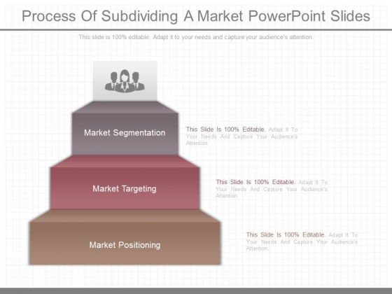 Process Of Subdividing A Market Powerpoint Slides