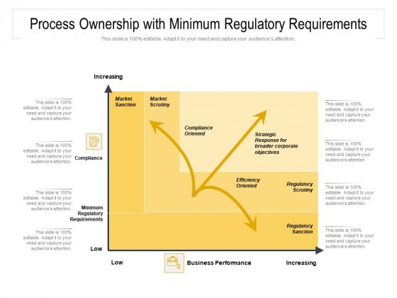 Process Ownership With Minimum Regulatory Requirements Ppt PowerPoint Presentation File Vector PDF