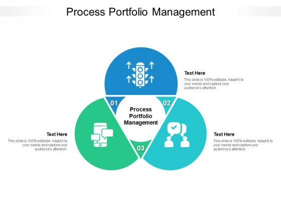 Process Portfolio Management Ppt PowerPoint Presentation Portfolio Templates Cpb Pdf