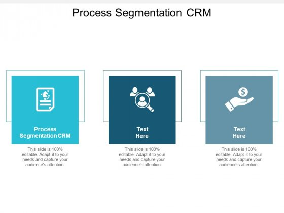 Process Segmentation CRM Ppt PowerPoint Presentation Ideas Sample Cpb