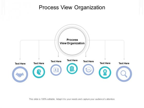 Process View Organization Ppt PowerPoint Presentation Portfolio Guide Cpb Pdf