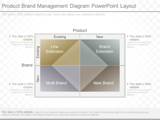 Product Brand Management Diagram Powerpoint Layout