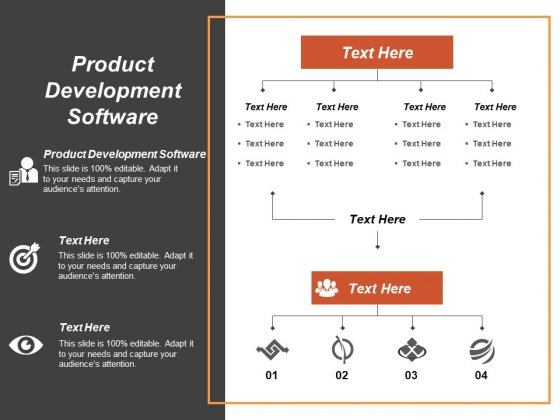 Product Development Software Ppt PowerPoint Presentation Summary Example Topics Cpb