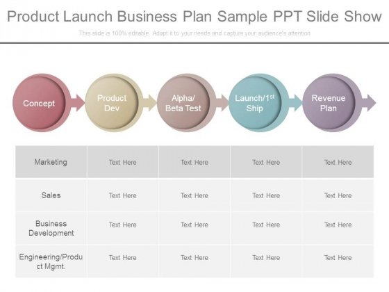 product launch business plan sample ppt slide show powerpoint