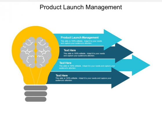 Product Launch Management Ppt PowerPoint Presentation Icon Graphics Cpb