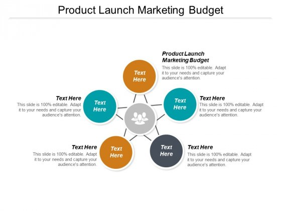 Product Launch Marketing Budget Ppt PowerPoint Presentation Summary Show Cpb