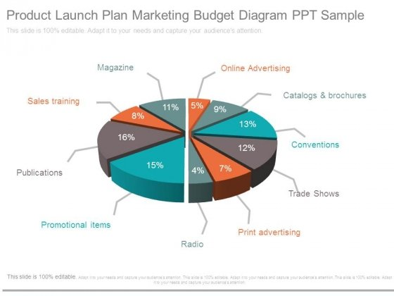 Product Launch Plan Marketing Budget Diagram Ppt Sample