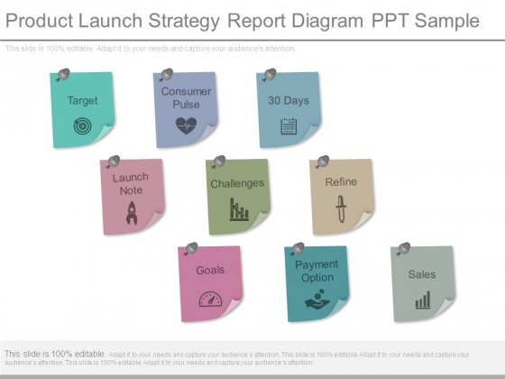 Product Launch Strategy Report Diagram Ppt Sample