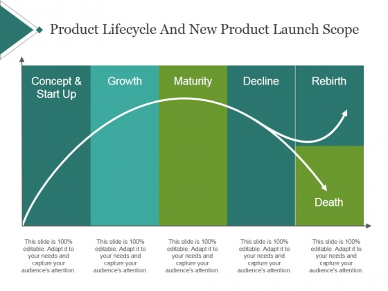 Product Lifecycle And New Product Launch Scope Template 2 Ppt PowerPoint Presentation Show