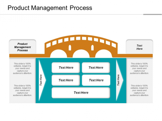 Product Management Process Ppt PowerPoint Presentation Infographic Template Microsoft Cpb