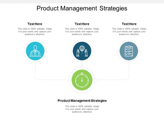 Product Management Strategies Ppt PowerPoint Presentation Professional Example Introduction Cpb