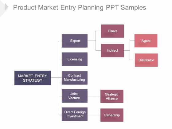 Product Market Entry Planning Ppt Samples
