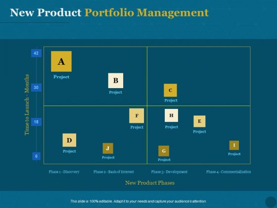 Product Portfolio Management For New Product Development New Product Portfolio Management Diagrams PDF