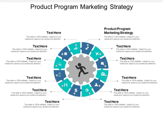 Product Program Marketing Strategy Ppt PowerPoint Presentation Model Shapes Cpb