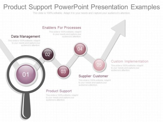 Product Support Powerpoint Presentation Examples