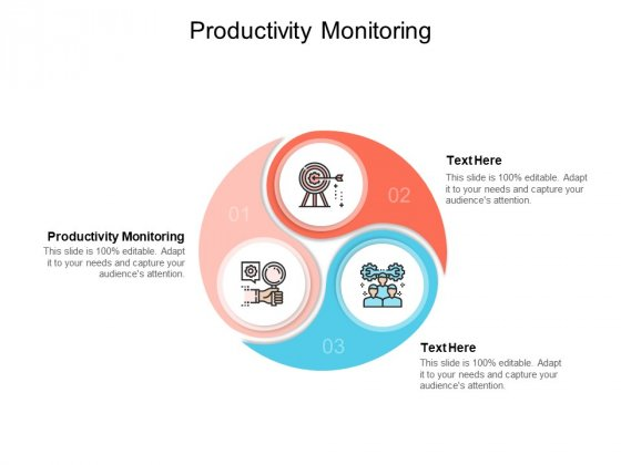 Productivity Monitoring Ppt PowerPoint Presentation Professional Format Cpb