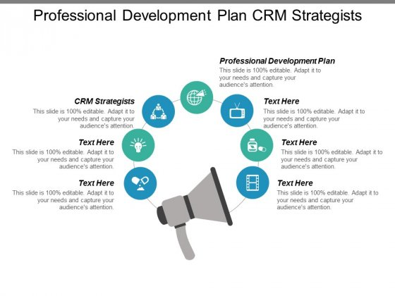 Professional Development Plan Crm Strategists Ppt PowerPoint Presentation Inspiration Show