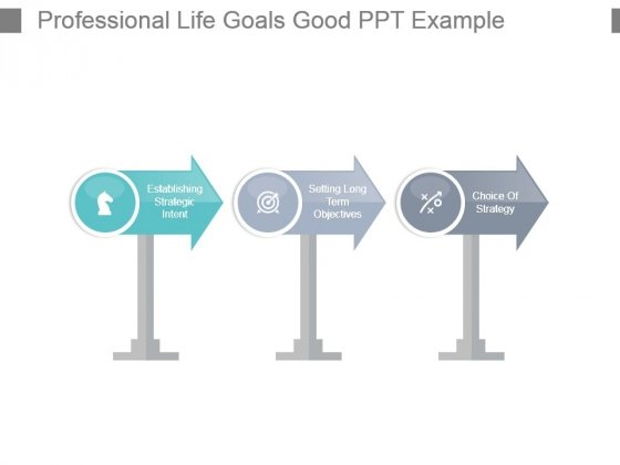 Professional Life Goals Good Ppt Example