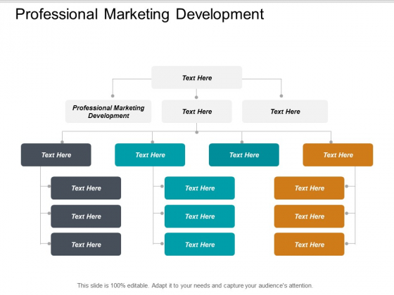 Professional Marketing Development Ppt PowerPoint Presentation Show Guidelines Cpb