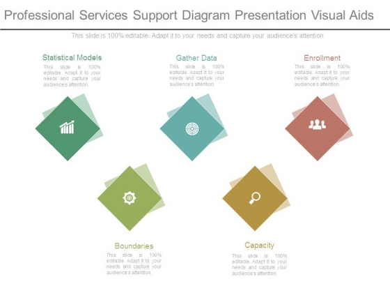Professional Services Support Diagram Presentation Visual Aids