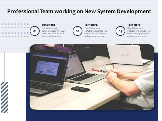 Professional Team Working On New System Development Ppt PowerPoint Presentation Pictures Background Designs PDF