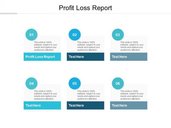 Profit Loss Report Ppt PowerPoint Presentation Summary Grid Cpb