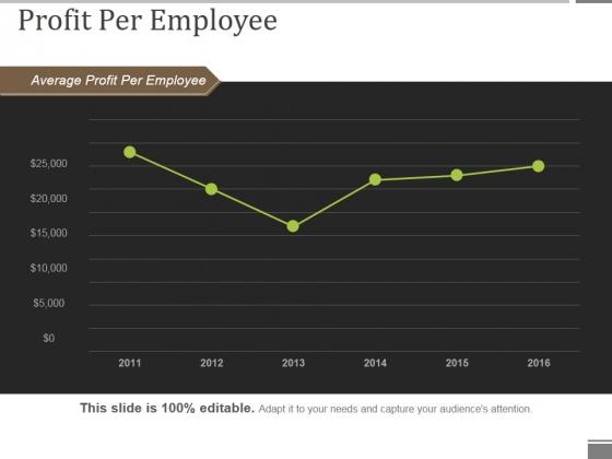 Profit Per Employee Ppt PowerPoint Presentation Show Portfolio