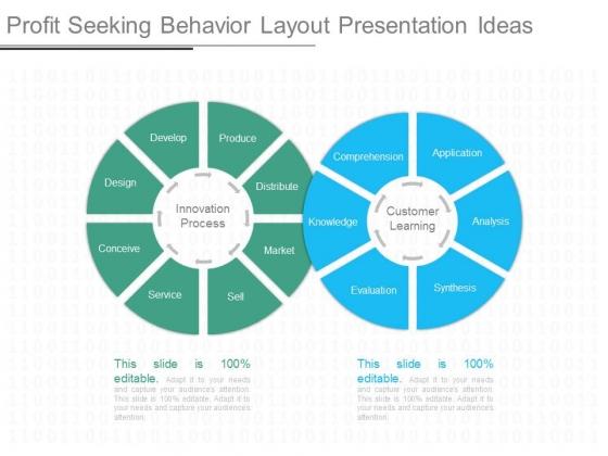 Profit Seeking Behavior Layout Presentation Ideas