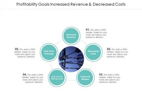 Profitability Goals Increased Revenue And Decreased Costs Ppt PowerPoint Presentation Summary Design Inspiration
