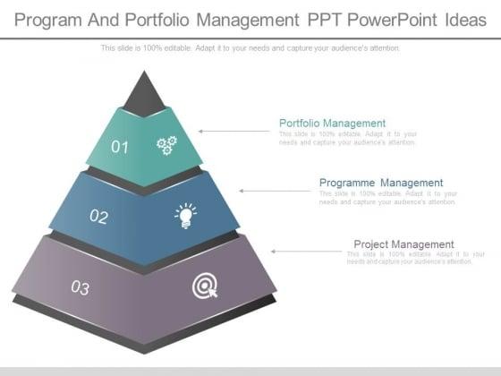 Program And Portfolio Management Ppt Powerpoint Ideas