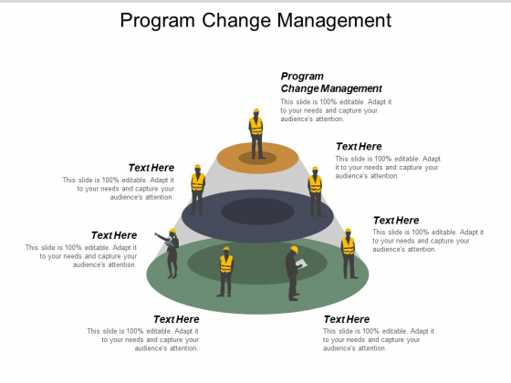 Program Change Management Ppt PowerPoint Presentation Icon Graphics Cpb