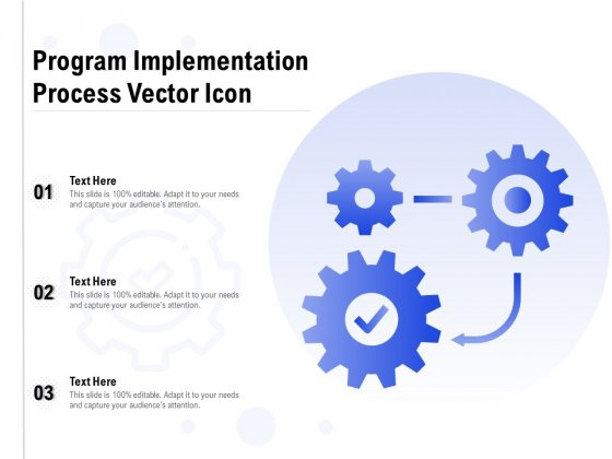 Program Implementation Process Vector Icon Ppt PowerPoint Presentation Styles Example Topics