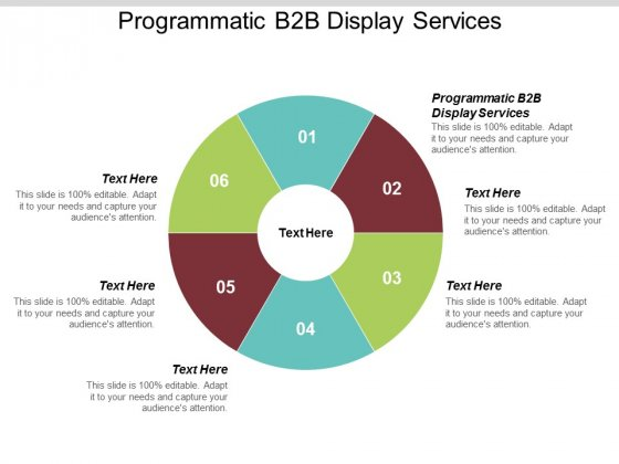 Programmatic B2B Display Services Ppt PowerPoint Presentation Infographic Template Brochure Cpb