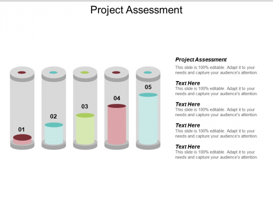 Project Assessment Ppt PowerPoint Presentation Summary Microsoft Cpb