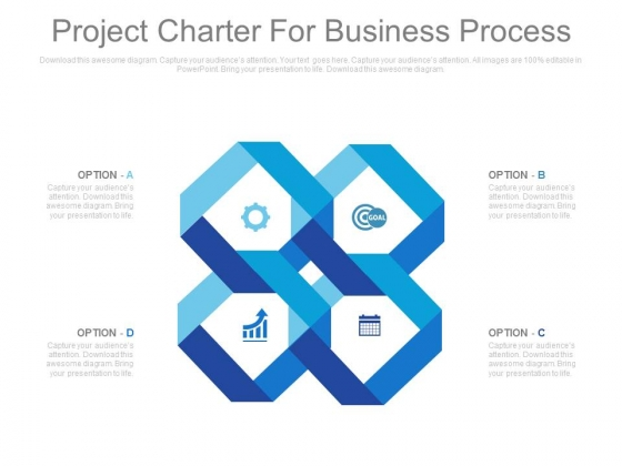 Project Charter For Business Process Ppt Slides