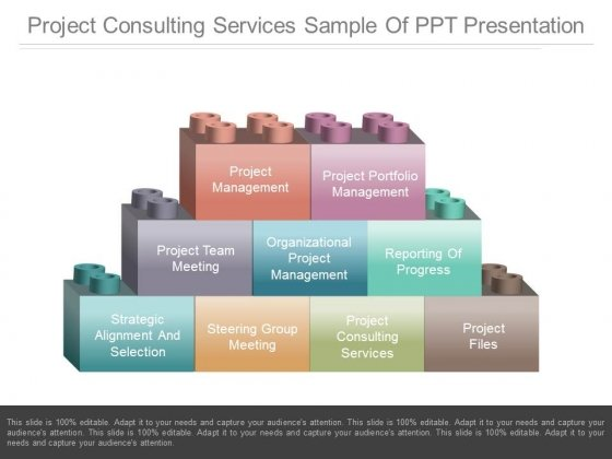 Project Consulting Services Sample Of Ppt Presentation