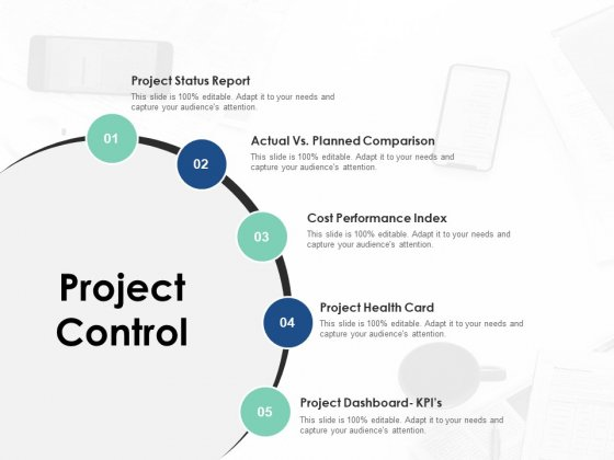 Project Control Ppt PowerPoint Presentation Outline Infographic Template