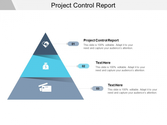 Project Control Report Ppt PowerPoint Presentation Pictures Tips Cpb