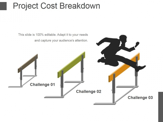 Project Cost Breakdown Ppt PowerPoint Presentation File Layout Ideas
