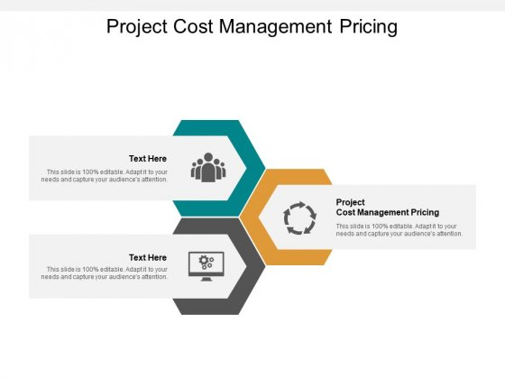 Project Cost Management Pricing Ppt PowerPoint Presentation Styles Slide Download Cpb
