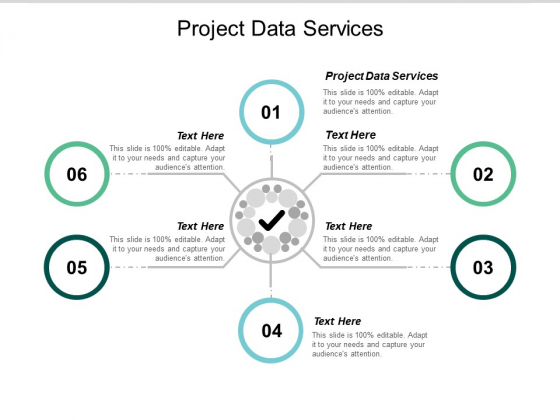 Project Data Services Ppt PowerPoint Presentation Layouts Example Cpb