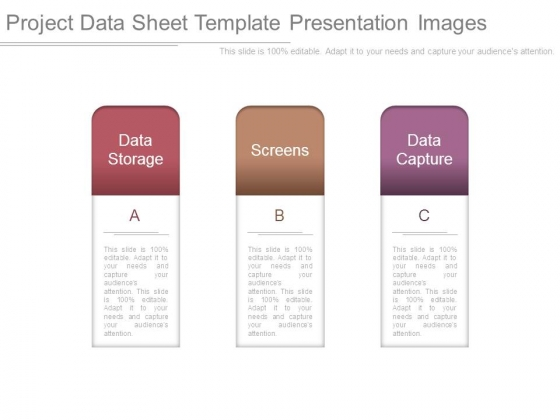Project Data Sheet Template Presentation Images - Powerpoint Templates