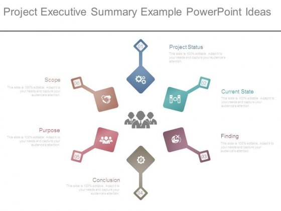 Project Executive Summary Example Powerpoint Ideas