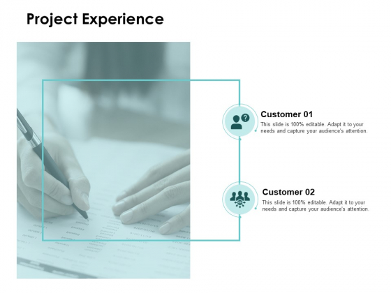 Project Experience Agenda Ppt PowerPoint Presentation Portfolio Gallery